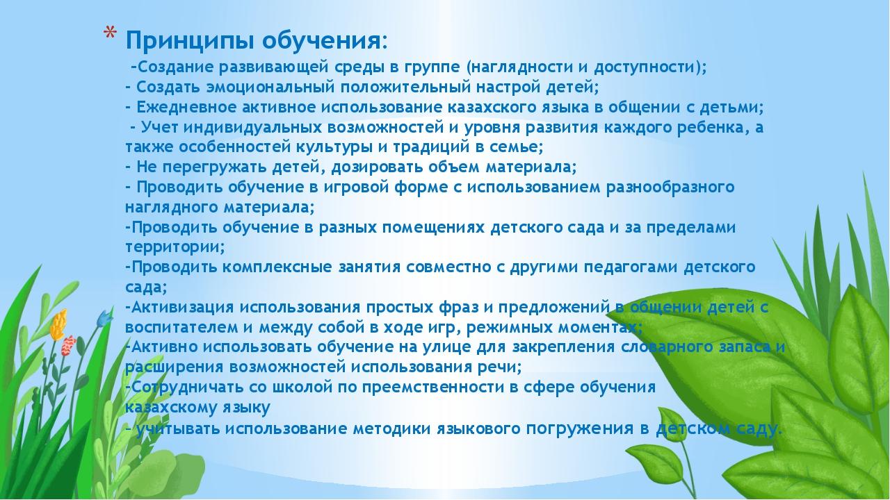 Принципы обучения: -Создание развивающей среды в группе(наглядности и доступ...