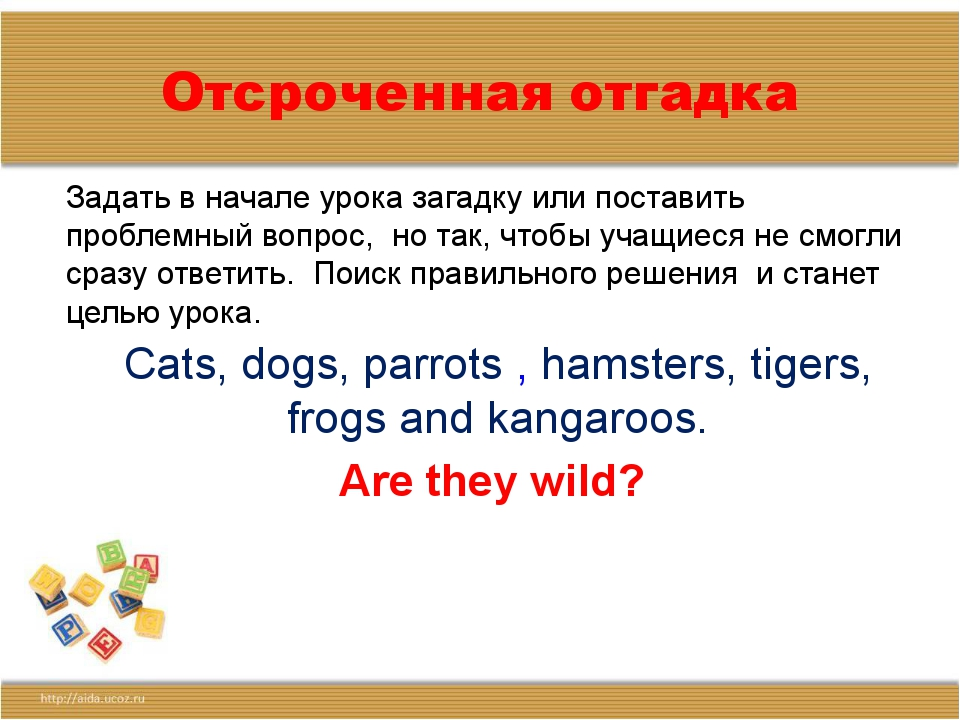 Отсроченная отгадка Cats, dogs, parrots , hamsters, tigers, frogs and kangaro...