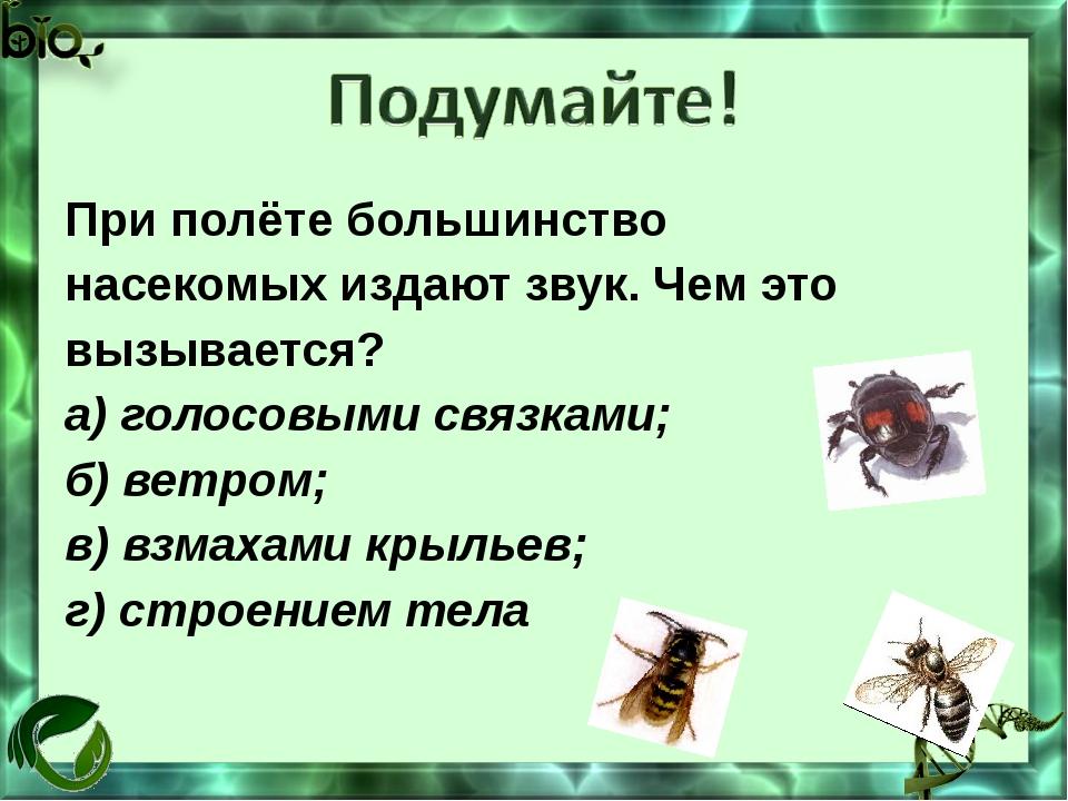 При полёте большинство насекомых издают звук. Чем это вызывается? а) голосовы...