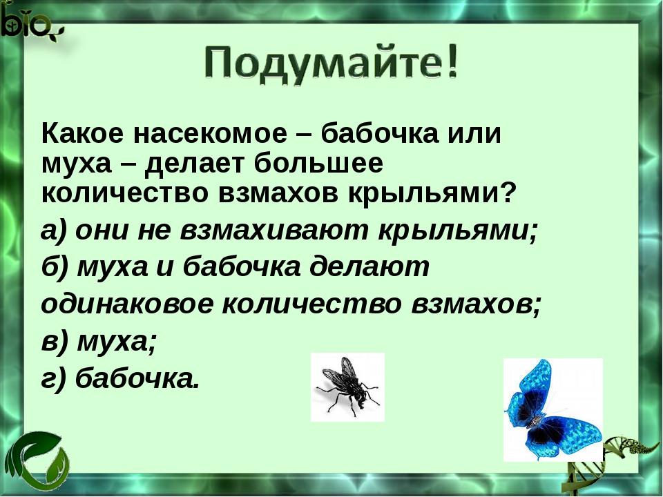 Какое насекомое – бабочка или муха – делает большее количество взмахов крылья...