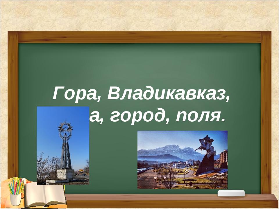 Гора, Владикавказ, леса, город, поля.