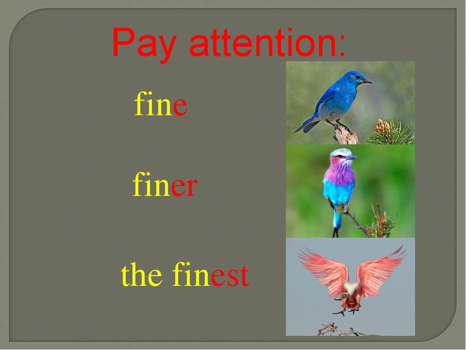 fine finer the finest Pay attention: