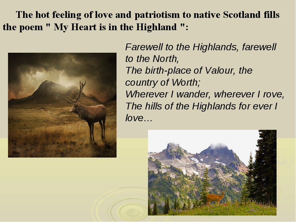 "The hot feeling of love and patriotism to native Scotland fills the poem "" M..."