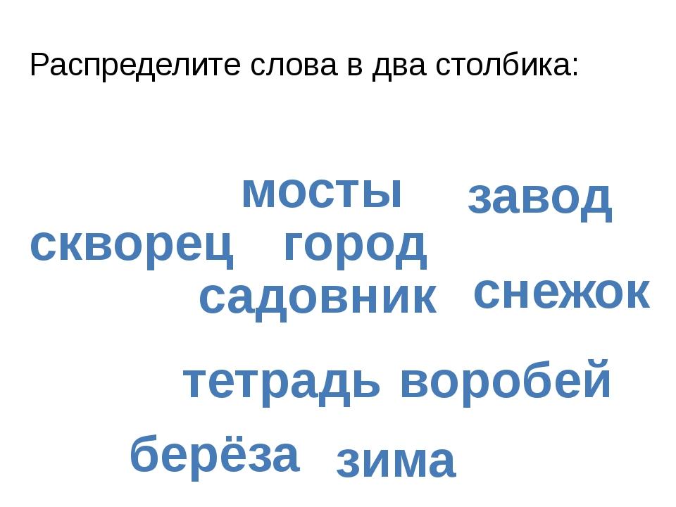 Распределите слова в два столбика: тетрадь снежок город завод скворец берёза...