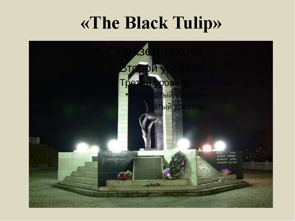 «The Black Tulip»