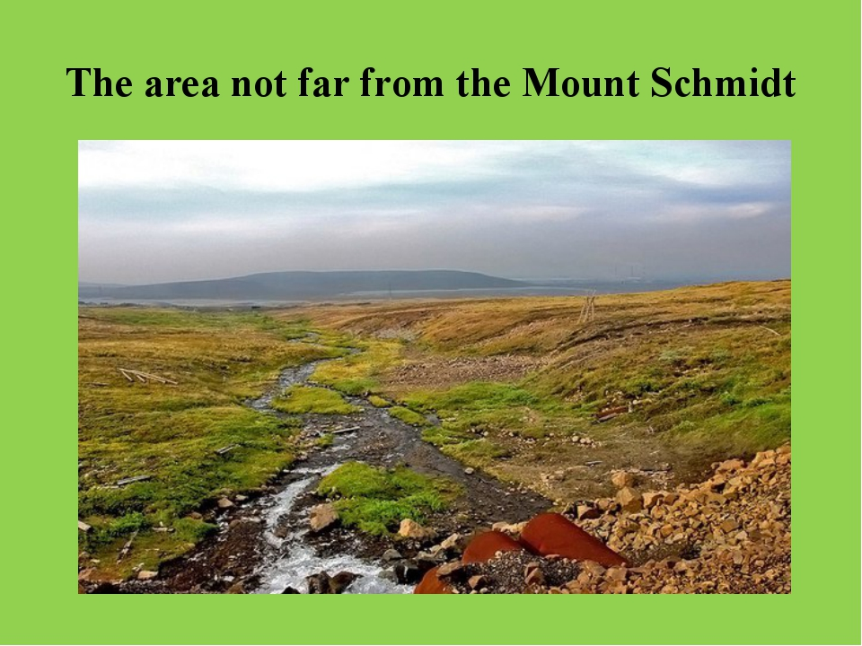 The area not far from the Mount Schmidt