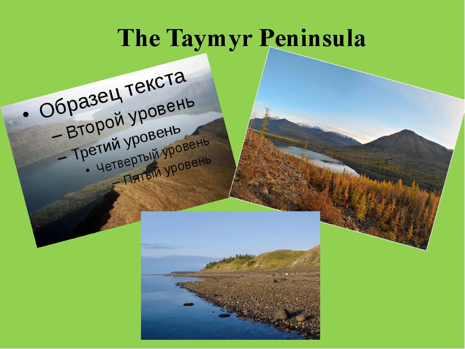 The Taymyr Peninsula