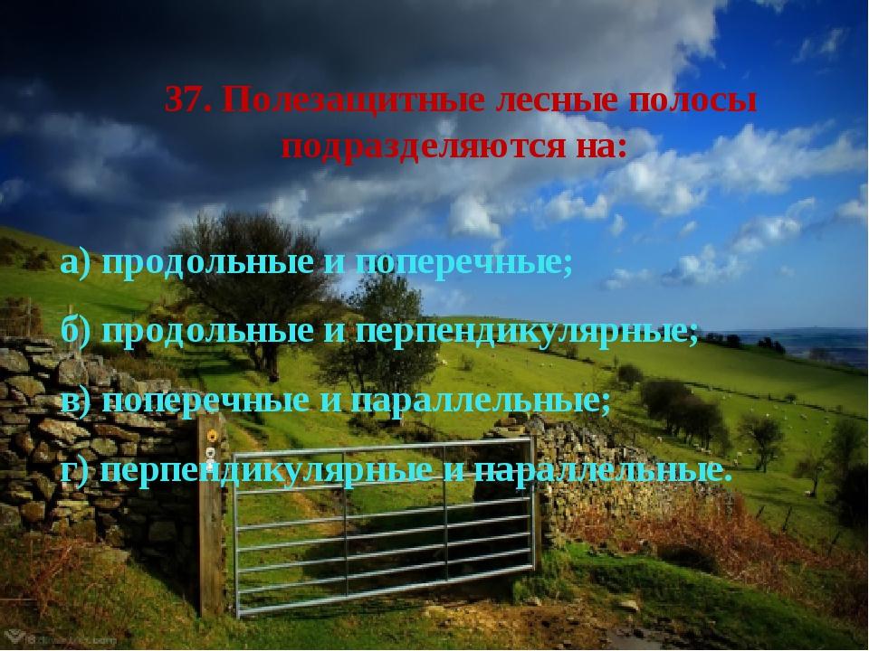 37. Полезащитные лесные полосы подразделяются на: а) продольные и поперечные;...