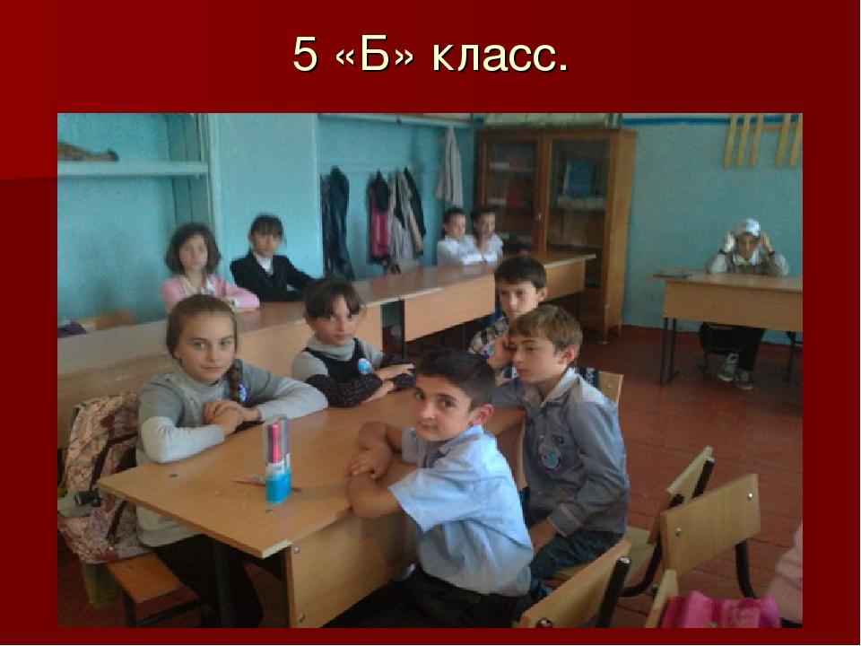 5 «Б» класс.