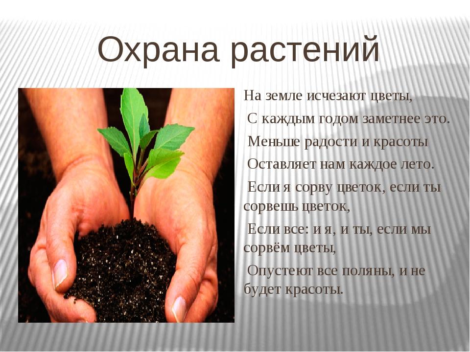 Охрана растений На земле исчезают цветы, С каждым годом заметнее это. Меньше...