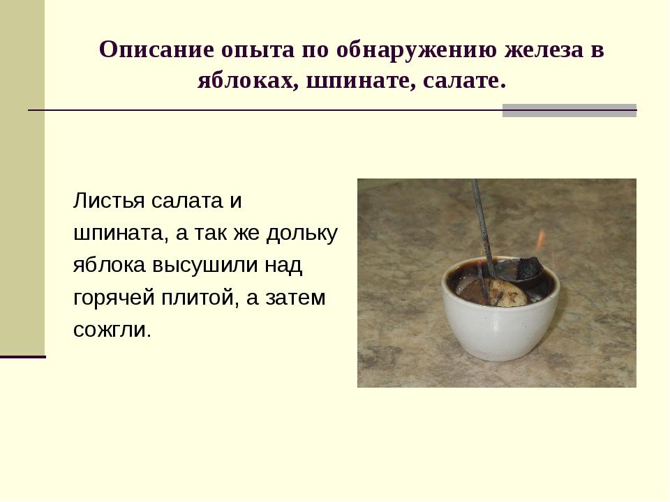 Описание опыта по обнаружению железа в яблоках, шпинате, салате. Листья салат...