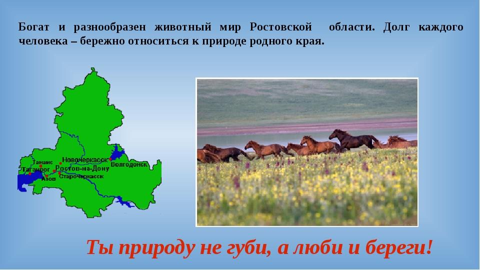 Богат и разнообразен животный мир Ростовской области. Долг каждого человека –...