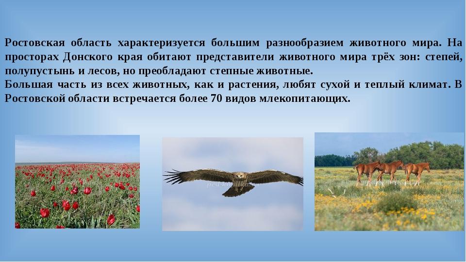 Ростовская область характеризуется большим разнообразием животного мира. На п...
