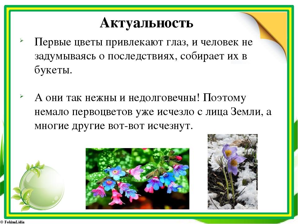Актуальность Первые цветы привлекают глаз, и человек не задумываясь о последс...