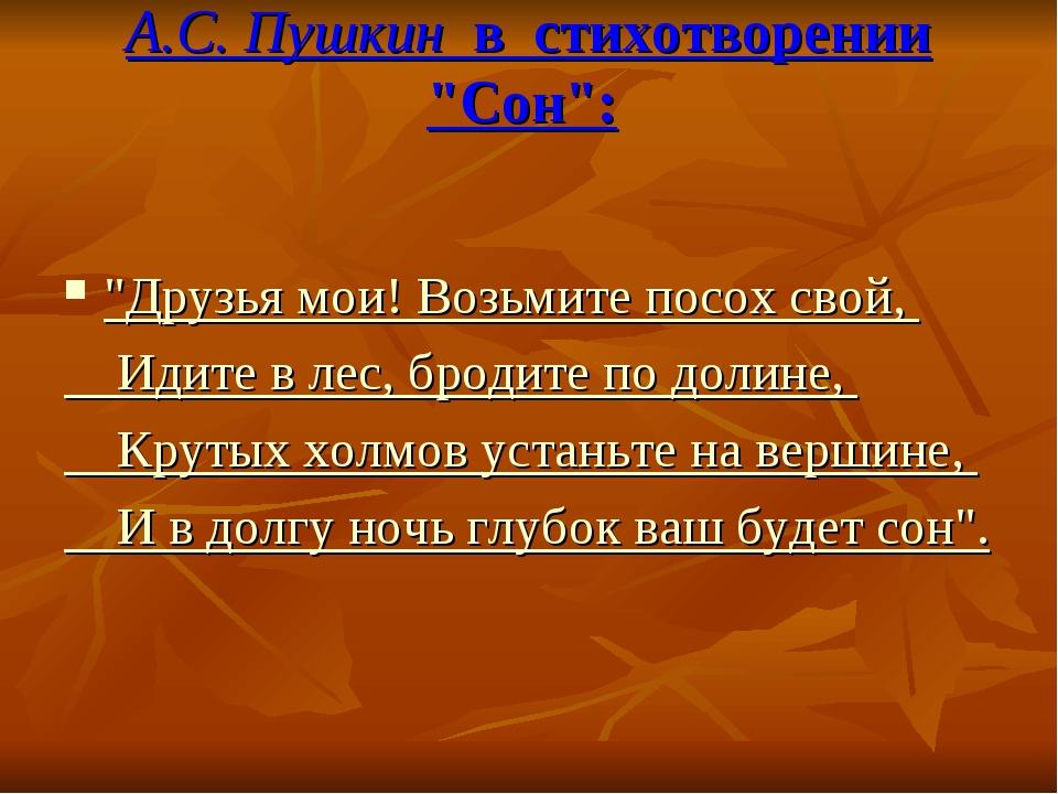 """А.С. Пушкин в стихотворении """"Сон"""": """"Друзья мои!Возьмите посох свой, Идите в..."""