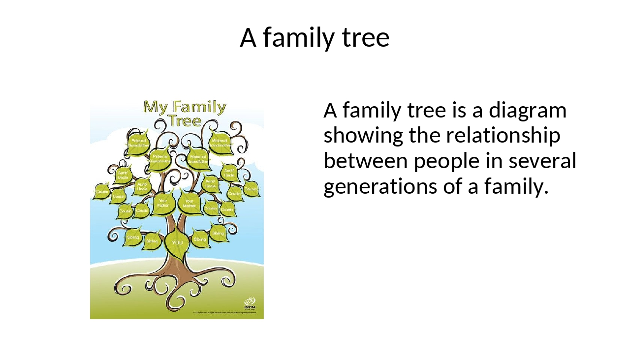 A family tree A family tree is a diagram showing the relationship between peo...