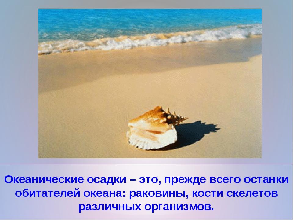 Океанические осадки – это, прежде всего останки обитателей океана: раковины,...