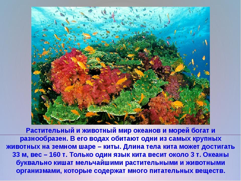 Растительный и животный мир океанов и морей богат и разнообразен. В его водах...