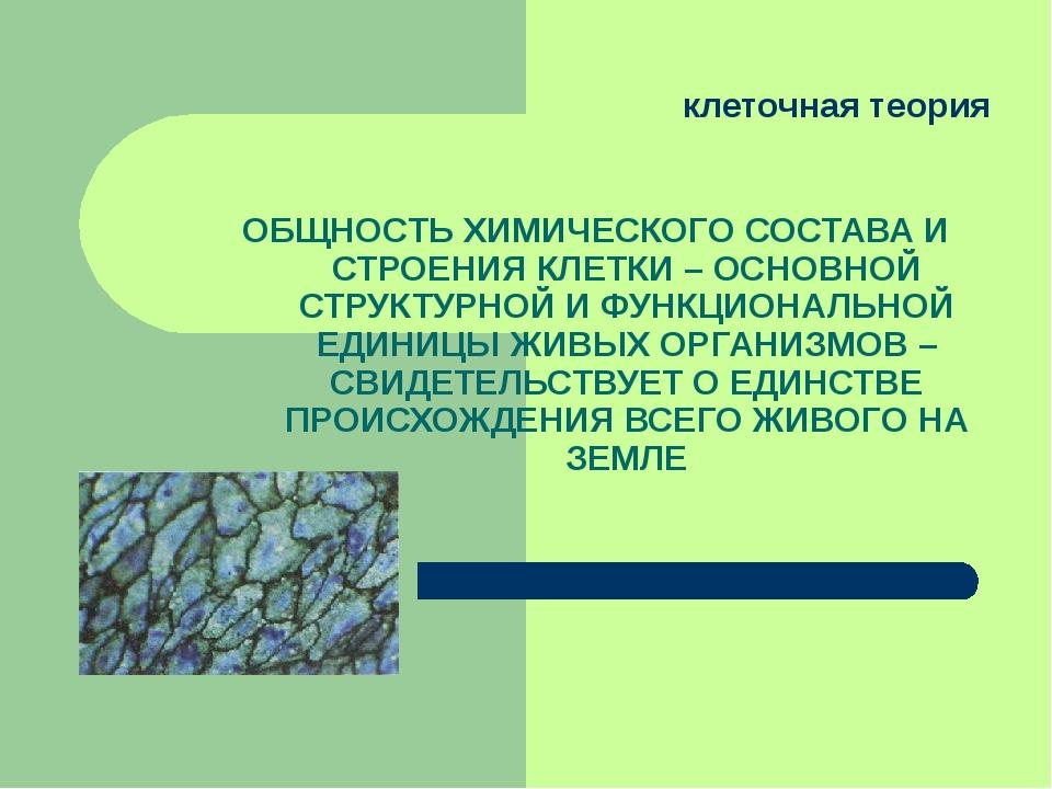 клеточная теория ОБЩНОСТЬ ХИМИЧЕСКОГО СОСТАВА И СТРОЕНИЯ КЛЕТКИ – ОСНОВНОЙ С...