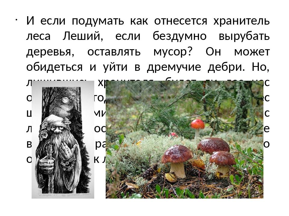 И если подумать как отнесется хранитель леса Леший, если бездумно вырубать де...