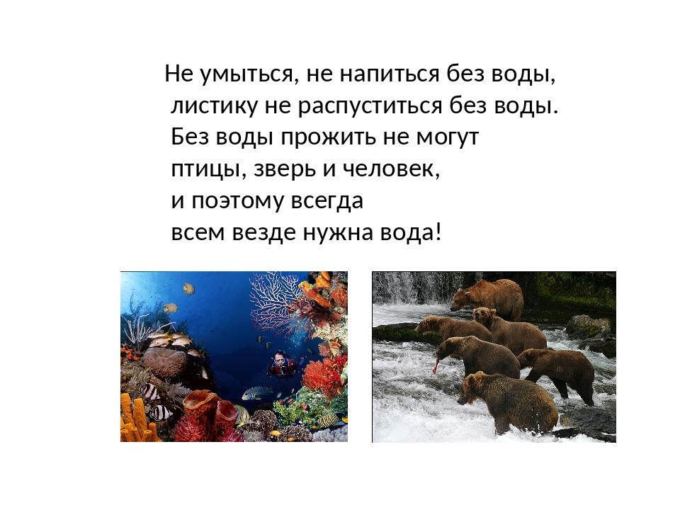Не умыться, не напиться без воды, листику не распуститься без воды. Без воды...