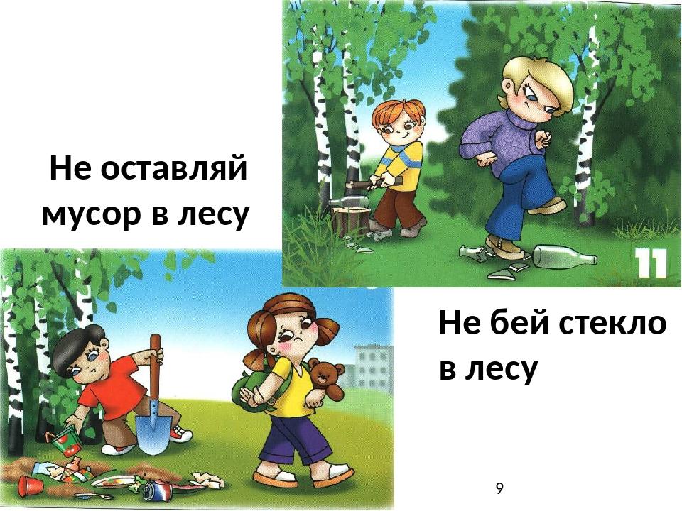 собрались картинка не сори в лесу молодости следила его