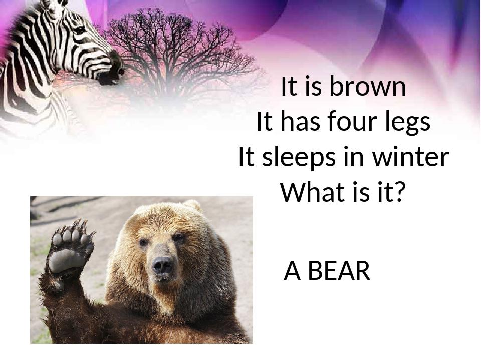 It is brown It has four legs It sleeps in winter What is it? A BEAR