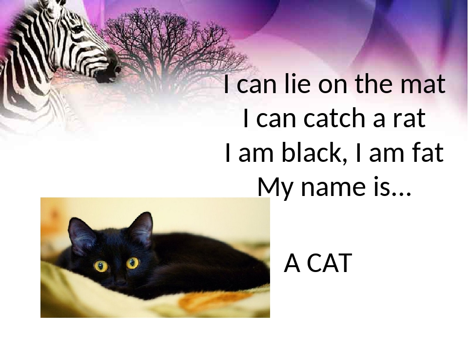 I can lie on the mat I can catch a rat I am black, I am fat My name is... A CAT