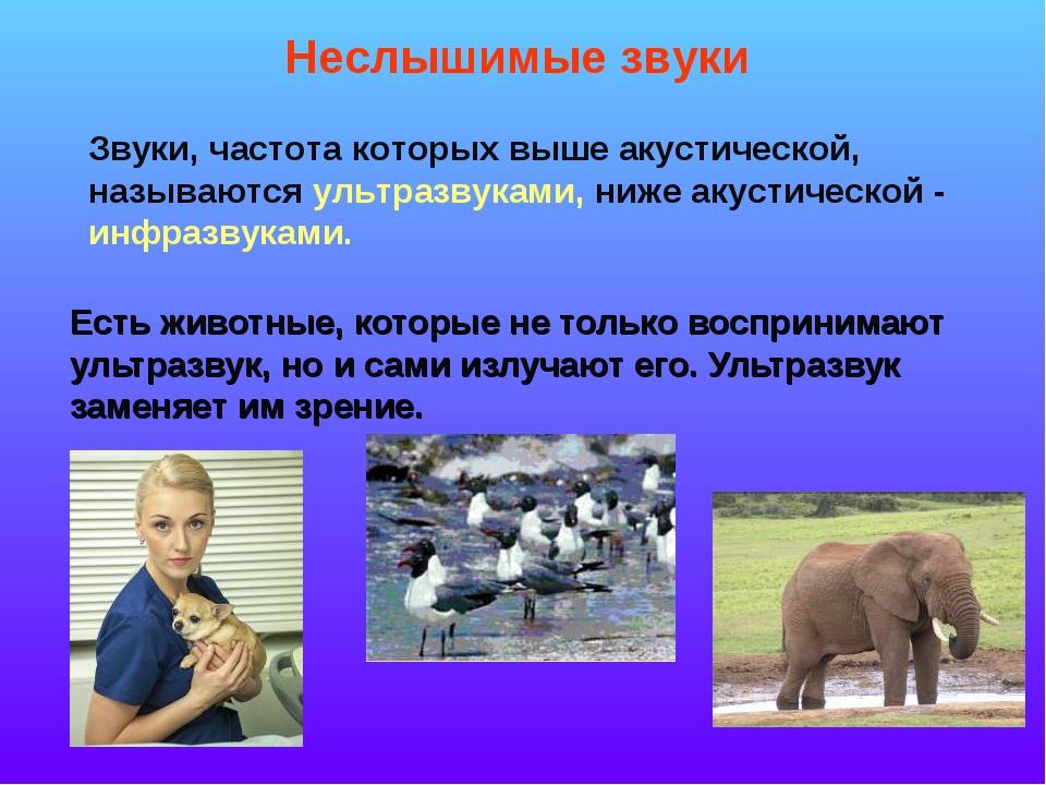 Есть животные, которые не только воспринимают ультразвук, но и сами излучают...