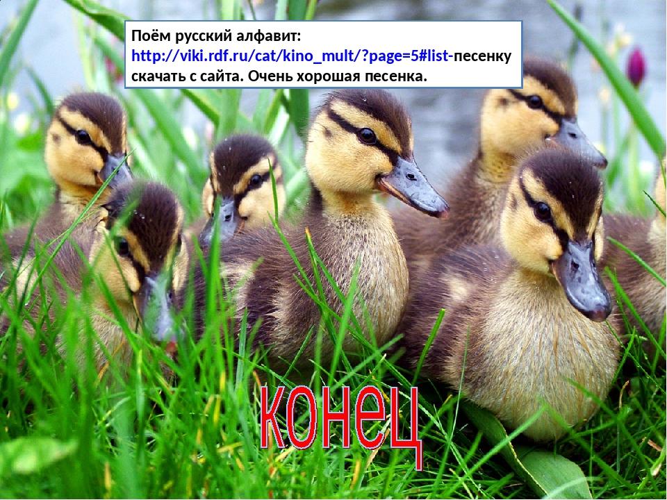 Поём русский алфавит: http://viki.rdf.ru/cat/kino_mult/?page=5#list-песенку с...