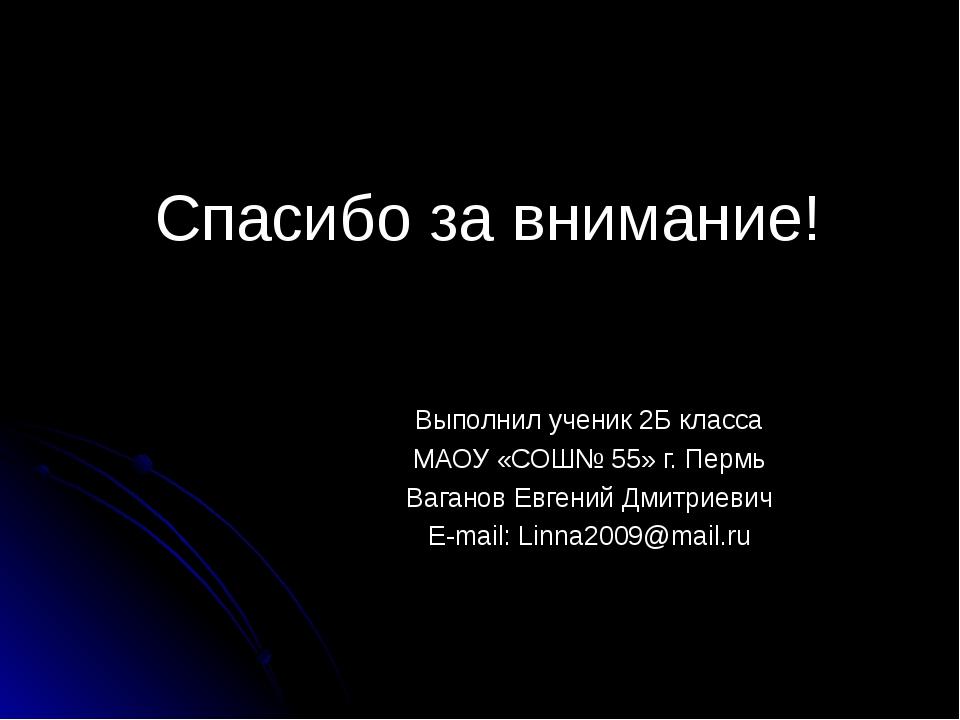 Спасибо за внимание! Выполнил ученик 2Б класса МАОУ «СОШ№ 55» г. Пермь Вагано...