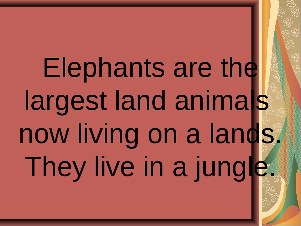 Elephants are the largest land animals now living on a lands. They live in a...
