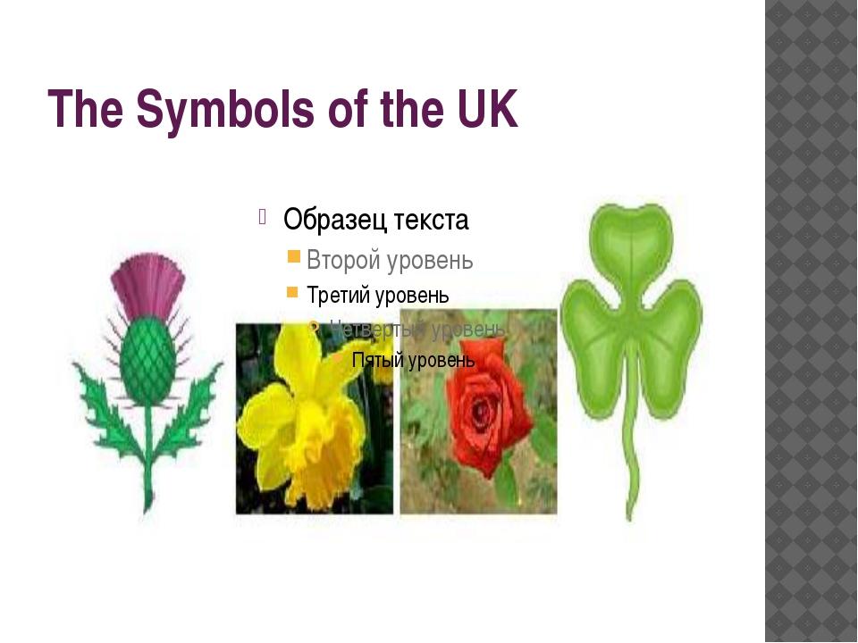 The Symbols of the UK