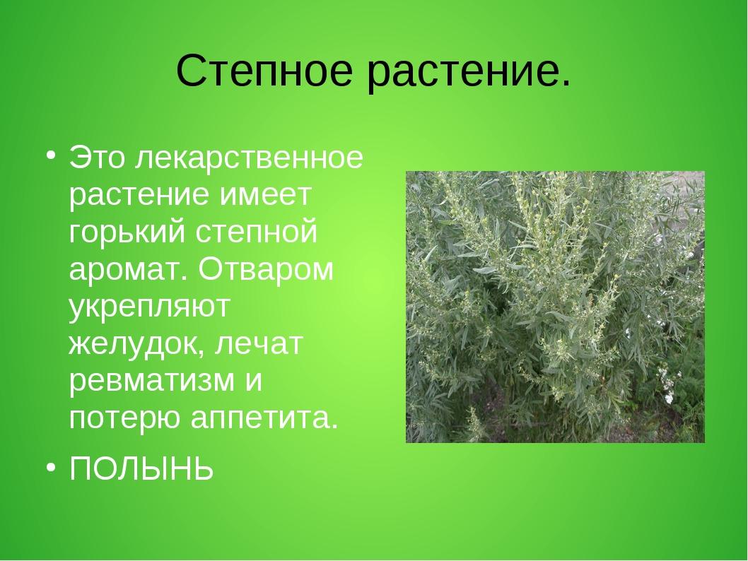 Степное растение. Это лекарственное растение имеет горький степной аромат. От...