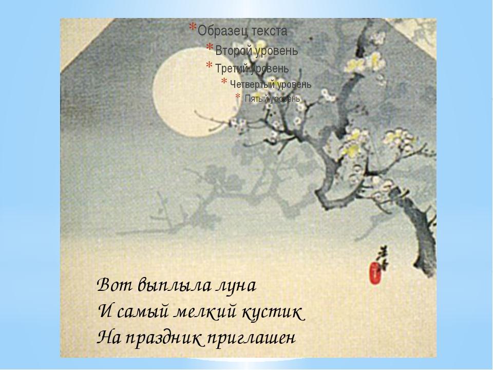 Вот выплыла луна И самый мелкий кустик На праздник приглашен