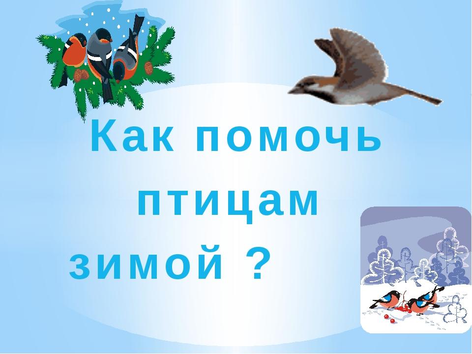 называется такой картинка как помочь птицам зимой собственник выбирает жб-опоры