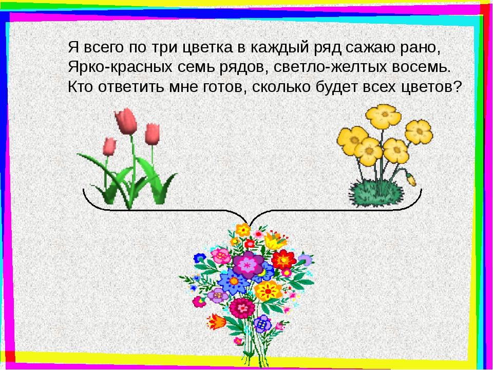 Я всего по три цветка в каждый ряд сажаю рано, Ярко-красных семь рядов, свет...