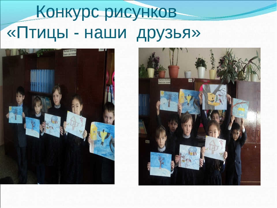 Конкурс рисунков «Птицы - наши друзья»