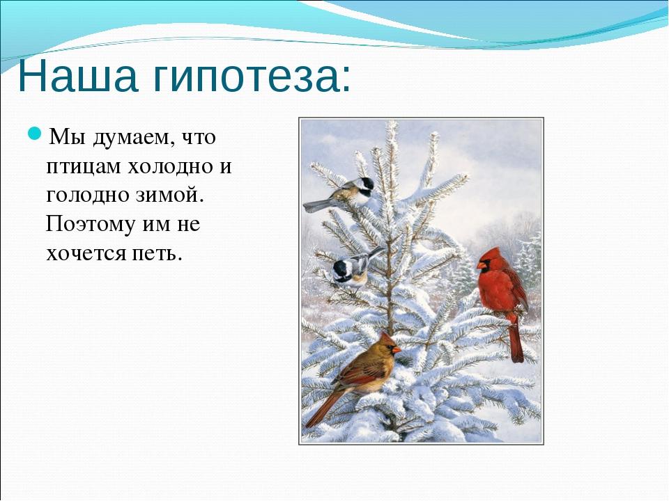 Наша гипотеза: Мы думаем, что птицам холодно и голодно зимой. Поэтому им не х...