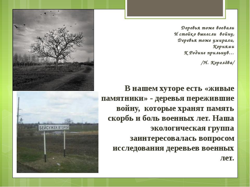 Деревья тоже воевали И стойко вынесли войну, Деревья тоже умирали, Корнями К...