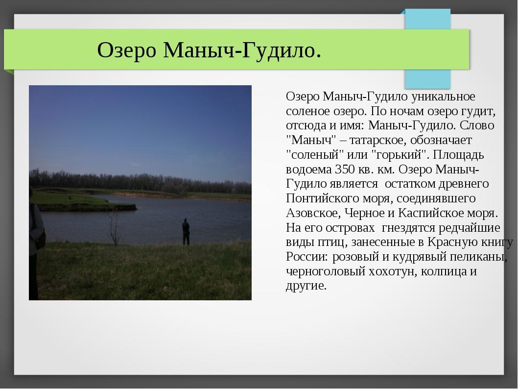 Озеро Маныч-Гудило. Озеро Маныч-Гудило уникальное соленое озеро. По ночам оз...