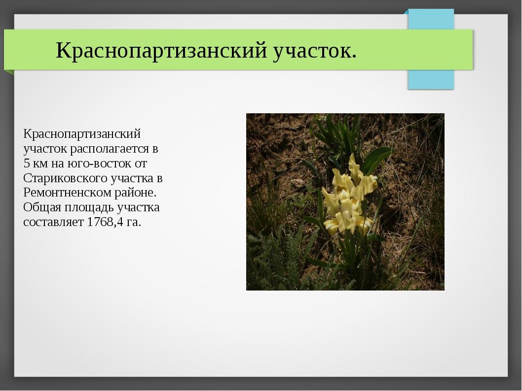 Краснопартизанский участок располагается в 5 км на юго-восток от Стариковског...
