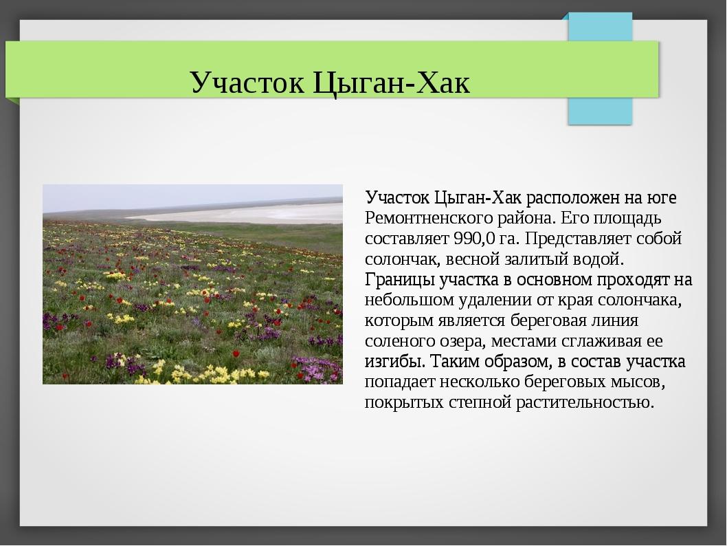 Участок Цыган-Хак расположен на юге Ремонтненского района. Его площадь состав...