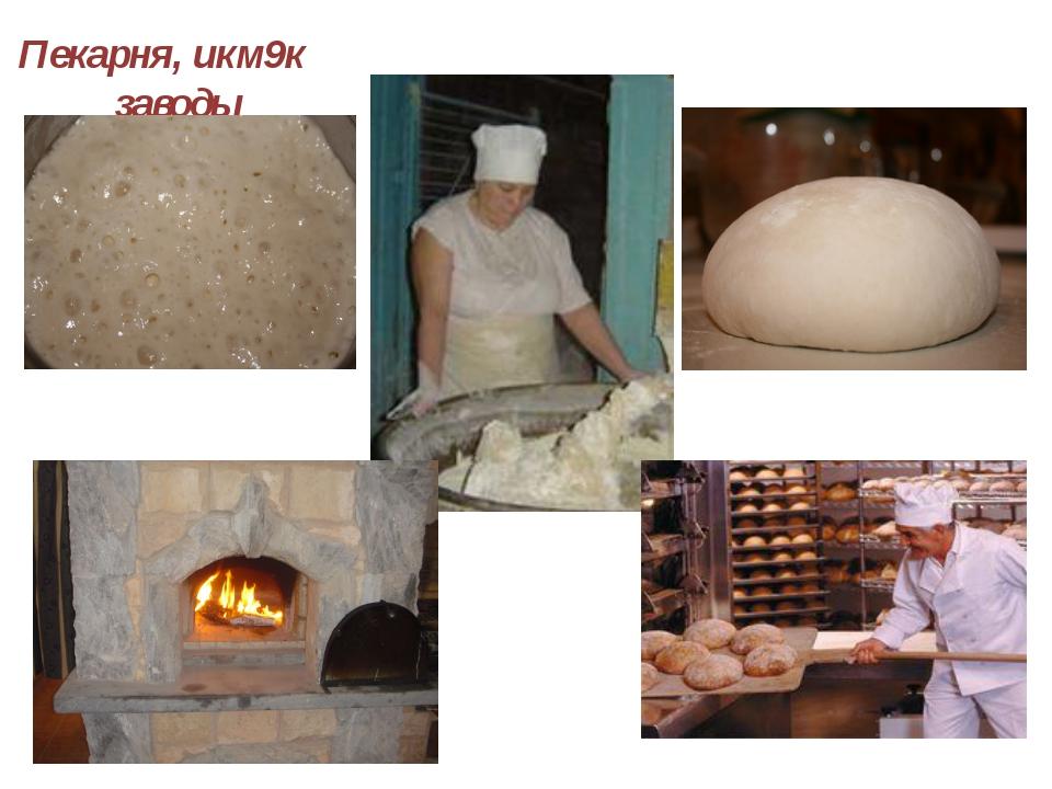 Пекарня, икм9к заводы